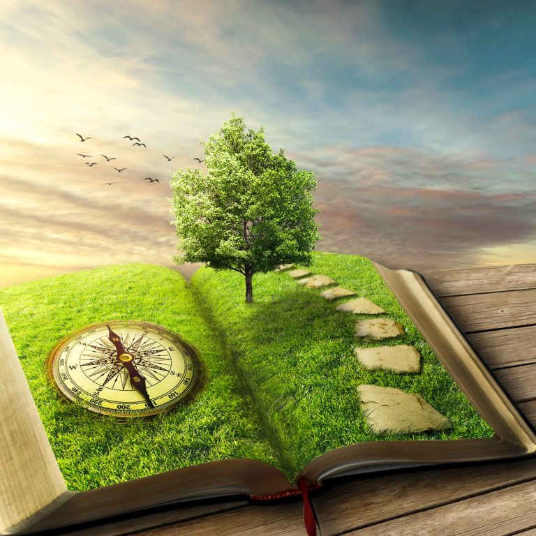 magic opened book covered with grass, compass, tree and stoned way on woody floor, balcony. Fantasy world, imaginary view. Book, tree of life, right way concept. Original screensaver.